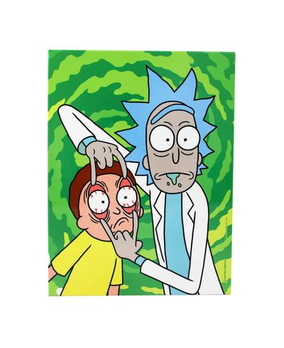 10081825_quadro_metal_26x19cm_ricky-and-morty_03_1