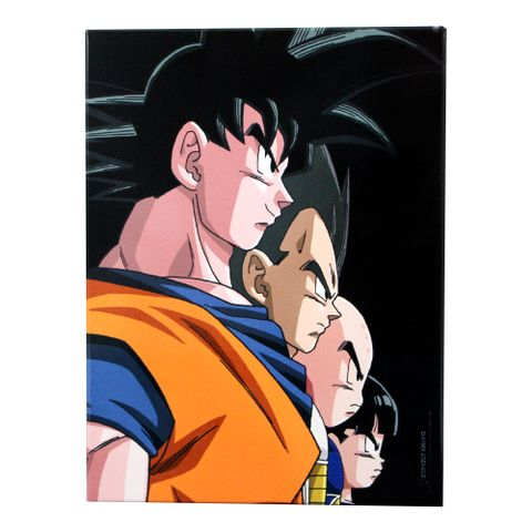 10081807_quadro_metal_26x19cm_dragon-ball-z_02_1